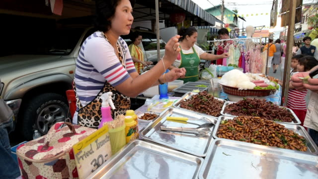 a woman sell fried insects in a food stall at night market - insect stock videos & royalty-free footage