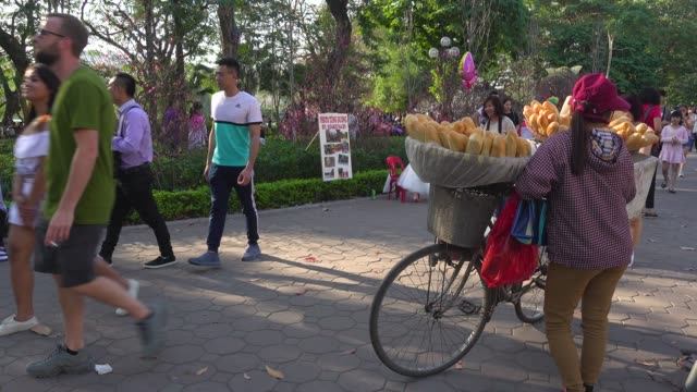 woman selling bread baguette at hanoi street next to buddhist temple during tet - vietnam stock videos & royalty-free footage