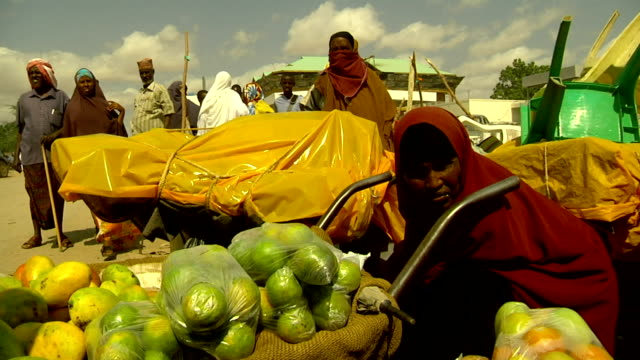 Woman selling fruit from wheelbarrow on July 29 2011 in Road from Garisa to Dadaab Kenya