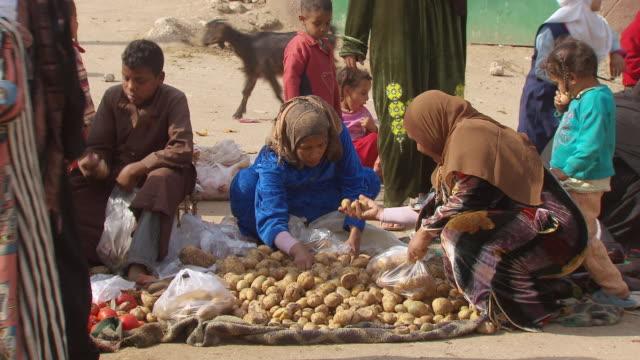 MS ZI Woman selling potatoes in village market / Egypt