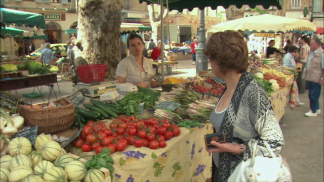 ms zi zo pan woman shopping vegetables in market / aix-en-provence, provence, france - provence alpes cote d'azur stock videos & royalty-free footage