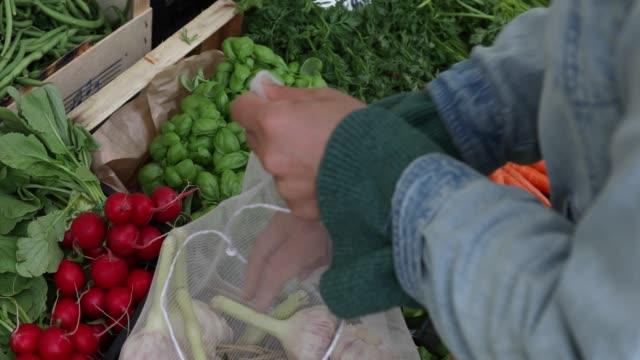 vídeos de stock e filmes b-roll de woman shops for vegetables at outdoor market - crucifers