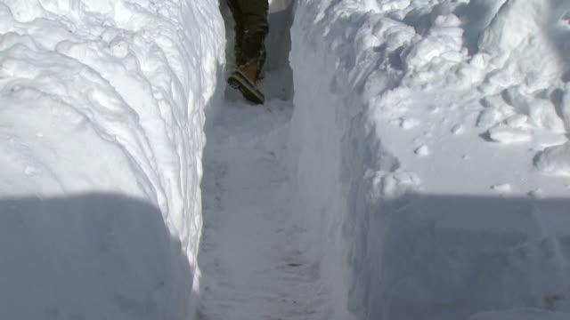 vídeos de stock e filmes b-roll de ms tu woman shoveling snow in front of log cabin, tweed, ontario, canada - pá para neve
