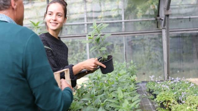 frau zeigt pflanzen dem kunden im gartencenter - kaufen stock-videos und b-roll-filmmaterial