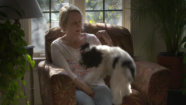 Woman sits on a chair and puppy jump into her lap.