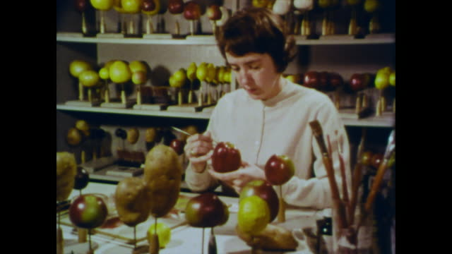 1966 a woman sits painting a usda apple model surrounded by finished and unfinished fruit models - 1966 stock videos and b-roll footage