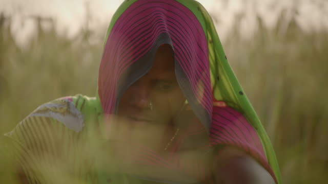 a woman sits solemnly in a field in uttar pradesh, india. - only mid adult women stock videos & royalty-free footage