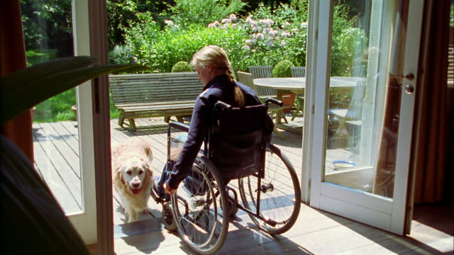 a woman sitting in a wheelchair pets a dog. - rollstuhl stock-videos und b-roll-filmmaterial