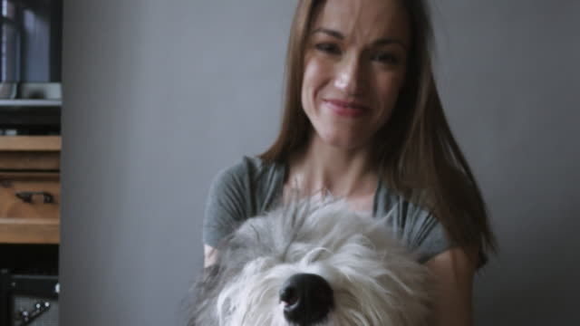 woman sitting in living room with pet dog on grey backdrop - sheepdog stock videos & royalty-free footage