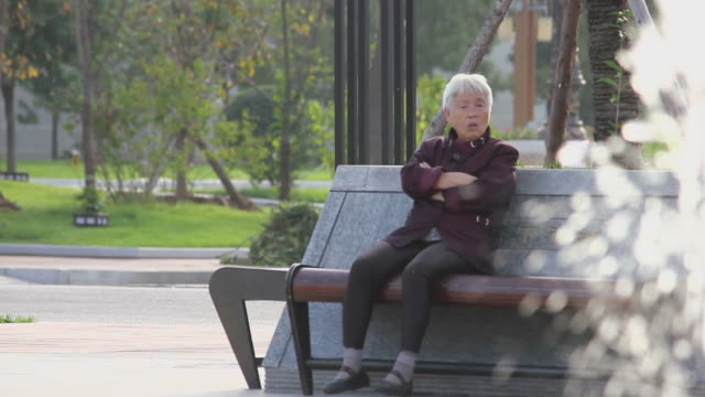 stockvideo's en b-roll-footage met ls woman sitting on a bench/xian,shaanxi,china - bank zitmeubels