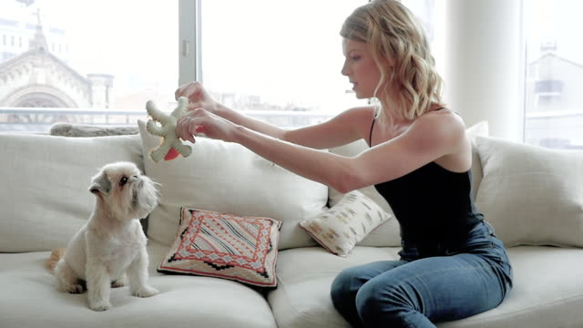 woman sitting on couch playing with her pet dog - ぬいぐるみ点の映像素材/bロール