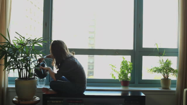 stockvideo's en b-roll-footage met ws woman sitting on low table by window watering houseplants, hoboken, new jersey, usa - water geven