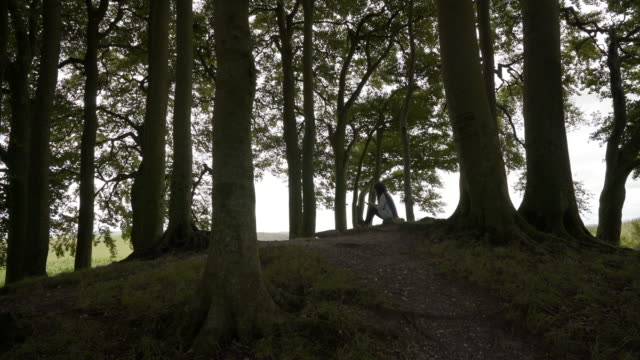 a woman sitting under the beech trees on one of the avebury barrows - old ruin stock videos & royalty-free footage