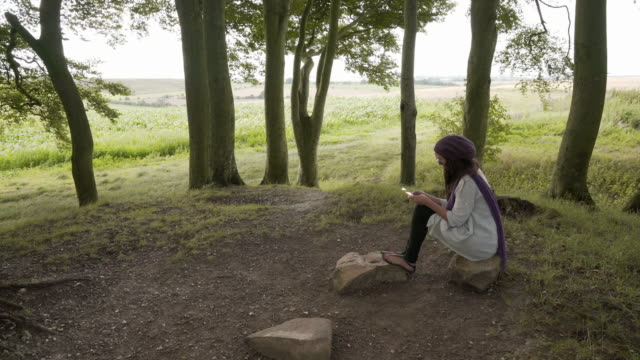 a woman sitting under the beech trees on one of the avebury barrows - avebury stock videos & royalty-free footage