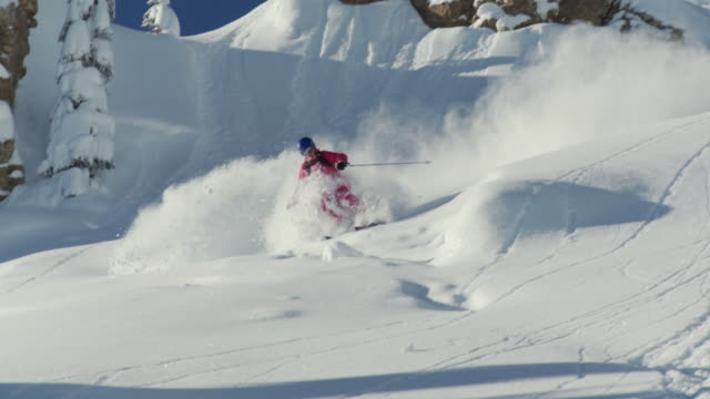 ws ts slo mo woman skiing down on powder snow / alta, snowbird, utah, usa - ユタ州 アルタ点の映像素材/bロール