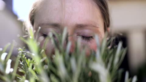 vidéos et rushes de woman smelling fresh rosemary. - herbe