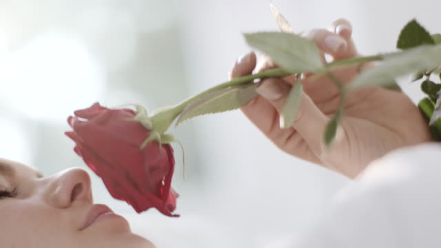 woman smelling rose - scented stock videos & royalty-free footage