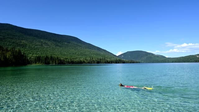 woman snorkeling at a stunning turquoise lake - canada stock videos & royalty-free footage