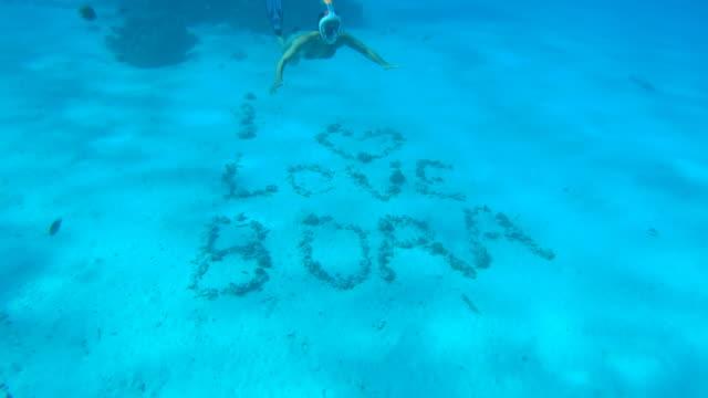 vídeos de stock, filmes e b-roll de a woman snorkeling at a tropical island resort with i love bora bora spelled out on the bottom. - invertebrado