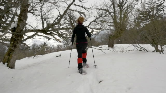 a woman snow shoeing in the mountain - leg warmers stock videos & royalty-free footage