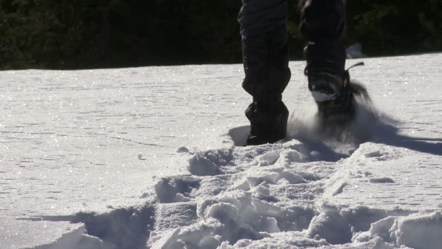 hd woman snowshoeing close-up - gehen stock videos & royalty-free footage
