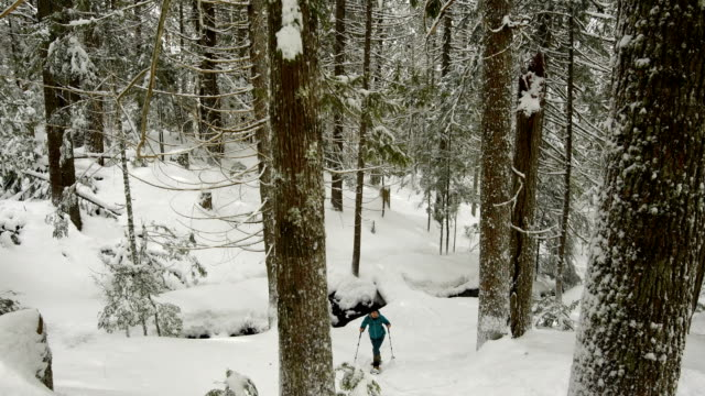 Woman snowshoeing in a snowy forest