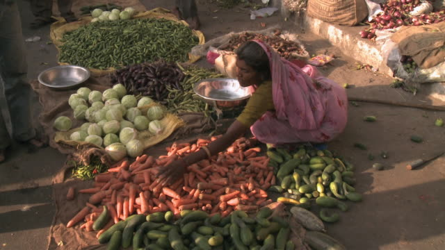 HA Woman sorting vegetables on the ground of an open air market / Rajkot, Gujarat, India