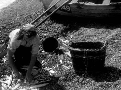 woman sorts out which fish to keep on chesil beach. 1956. - 1956 stock-videos und b-roll-filmmaterial