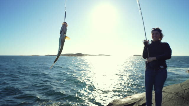 woman spinning fishing in the sea with a rod, catch a pollock - fishing rod stock videos & royalty-free footage