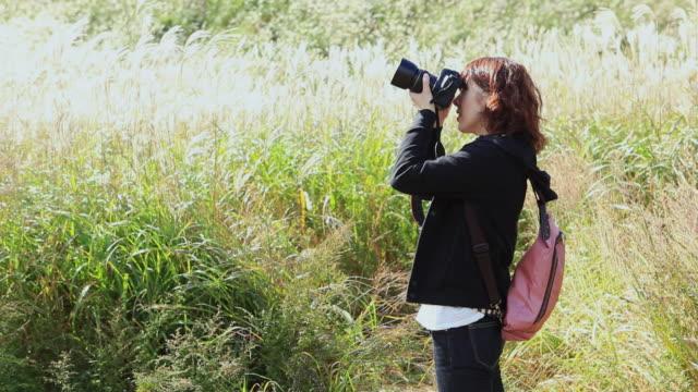 MS Woman standing in field and taking photos / Hakone, Kanagawa, Japan