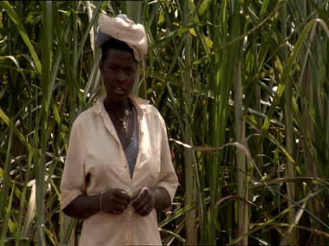 ms woman standing in front of sugar cane stalks / kigali, rwanda - フツ族点の映像素材/bロール
