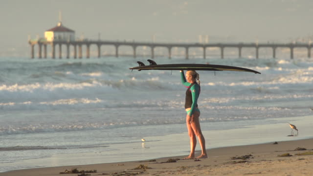 vidéos et rushes de a woman stand-up paddleboard surfing at the beach. - slow motion - filmed at 240 fps - petit groupe d'animaux