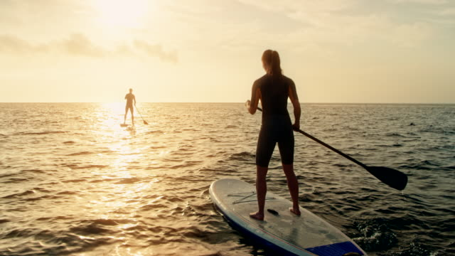 woman standup paddling behind the man at sunset - surfboard stock videos and b-roll footage