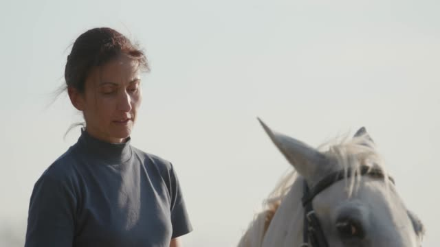 woman stirring up white horse, riding on ranch - recreational horse riding stock videos & royalty-free footage