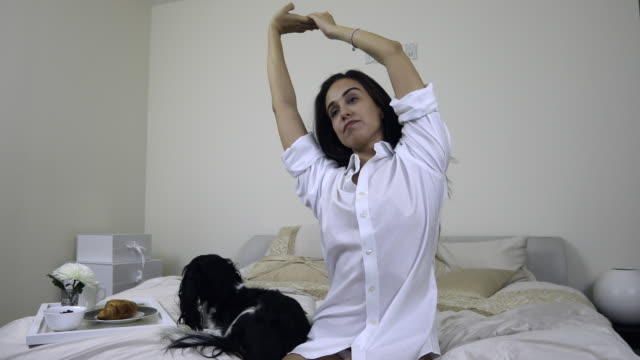 woman stretching stroking her dog - cavalier king charles spaniel stock videos and b-roll footage