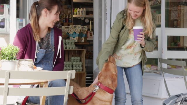 woman strokes labrador dog, while walking out of cafe with take away coffee. - 首輪点の映像素材/bロール