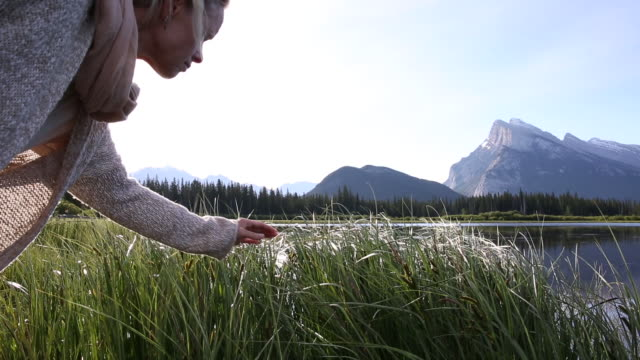 woman strokes long grasses by lakeshore, mountains behind - lakeshore stock videos & royalty-free footage