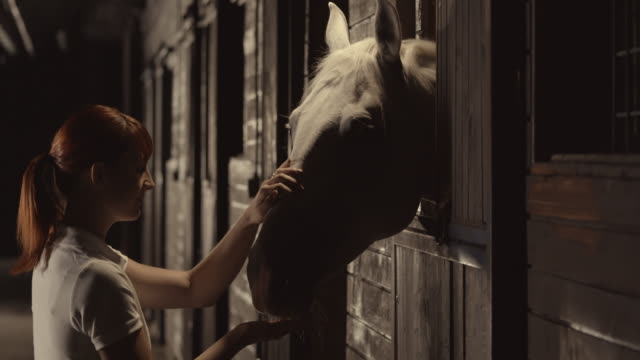 SLO MO DS Woman stroking her horse in the stables at night