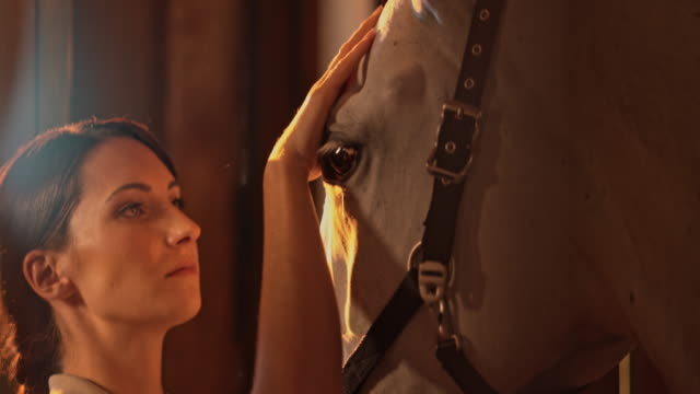 SLO MO Woman stroking horse's head at sunrise