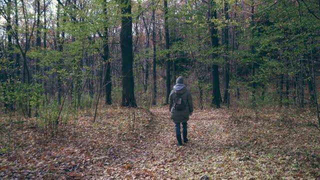 stockvideo's en b-roll-footage met vrouw wandeling in herfst bos op zonnige dag - sunny