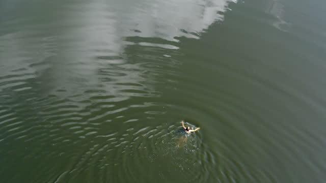 woman swimming in a lake - auf dem wasser treiben stock-videos und b-roll-filmmaterial