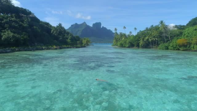 a woman swimming in a tropical green lagoon in bora bora tropical island. - bora bora stock videos & royalty-free footage