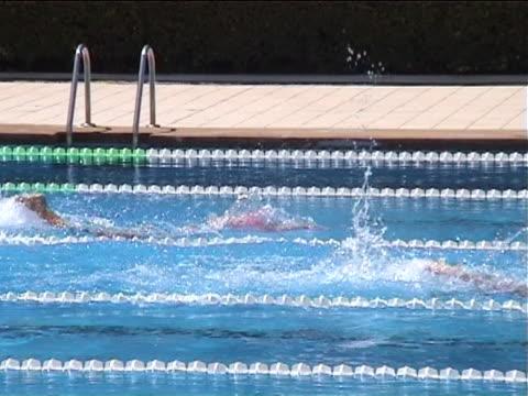 frau schwimmen im wettbewerb - menschlicher muskel stock-videos und b-roll-filmmaterial