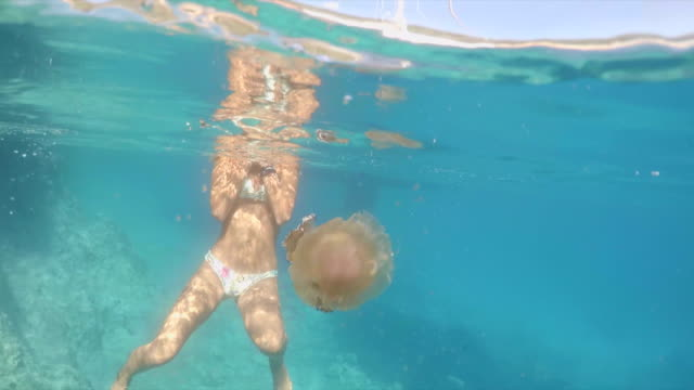 a woman swimming near a jellyfish underwater in greece. - qualle stock-videos und b-roll-filmmaterial