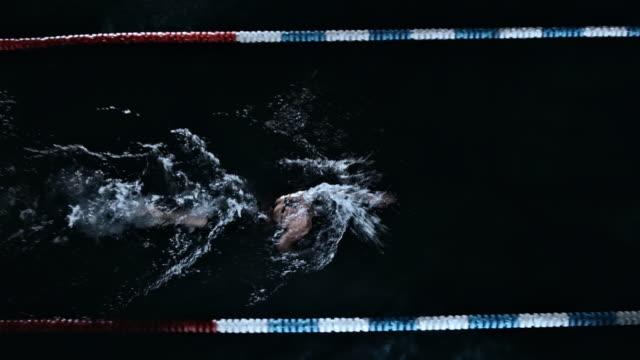 vídeos de stock, filmes e b-roll de woman swimming the front crawl - kranj