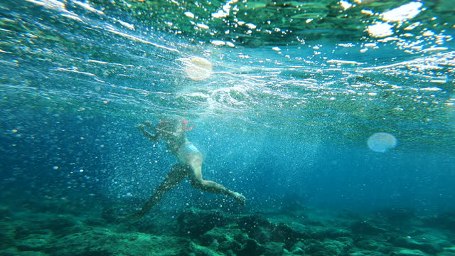 woman swimming under the sea - emmy awards stock videos & royalty-free footage