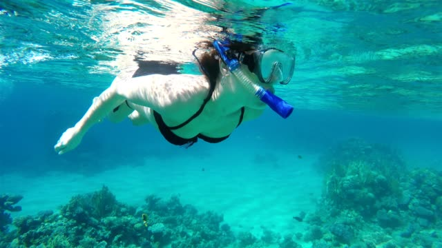 woman swims in the sea. sharm el sheikh. egypt. - red sea stock videos & royalty-free footage