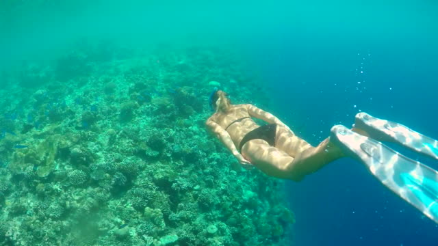 A woman swims snorkeling over the coral reef of a tropical island. - Slow Motion