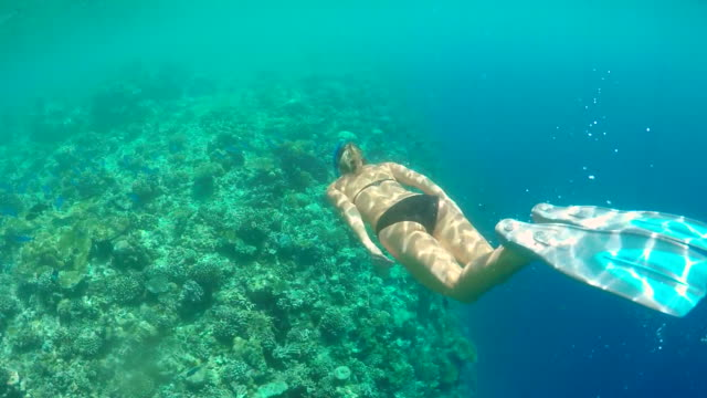 A woman swims snorkeling over the coral reef of a tropical island.