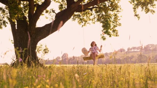 ds woman swinging on a tree swing - emozione positiva video stock e b–roll